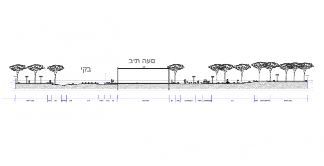 Cross section of a vineyard