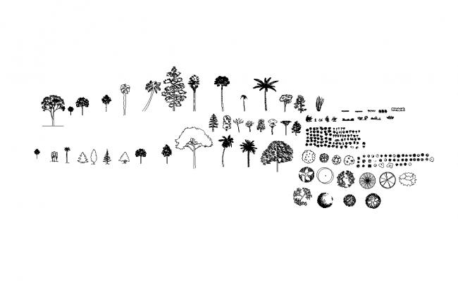 File vegetation